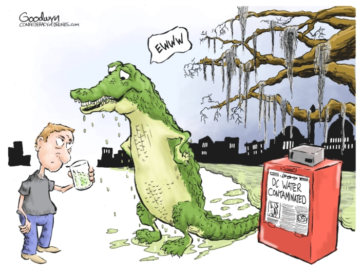 Swamp Water lr